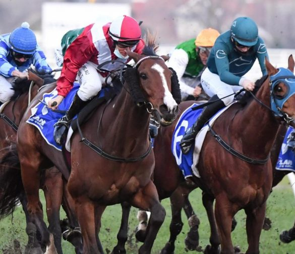 Racing Tips July 31st